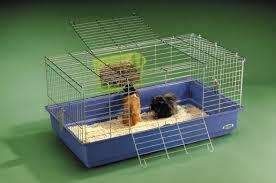 gabbie per conigli nani usate gabbie per piccoli animali