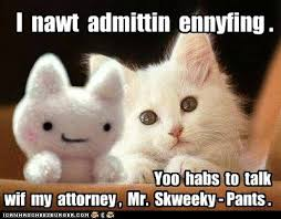 Lawyer Cat Meme - lolcats attorney lol at funny cat memes funny cat pictures