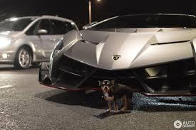 owners of lamborghini veneno lamborghini veneno 25 december 2016 autogespot