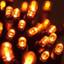 brizled string lights 25ft 100