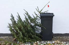 christmas tree disposal in the oklahoma city metro area