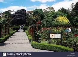 New Zealand Botanical Gardens Christchurch New Zealand Garden In Christchurch Botanical