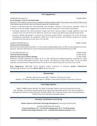 example of professional resumes professional resume examples by gayle howard top margin executive cvs cio resume example