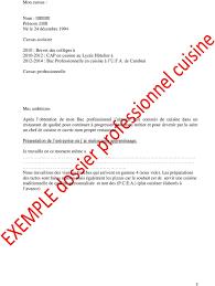 brevet professionnel cuisine dossier professionnel pdf
