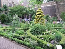 gardening urban and otherwise abigail willis