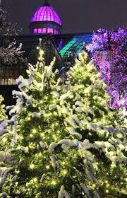 Zoo Lights Columbus Oh by 32 Best Ohio Christmas Images On Pinterest Columbus Ohio