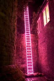 Pink Light Bxxlght U0027s Brand New Led Neon Light Shop The Exclusive Collection