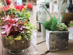 indoor plant arrangements playing with houseplants for indoor garden therapy garden therapy