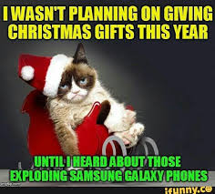 Cat Christmas Memes - found on grumpy cat cat and humor