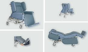 maxi deluxe rise reclining chair and day bed posh chair