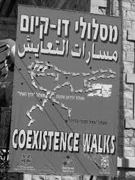 insurgent citizenship radicalism co optation and neighbourhood