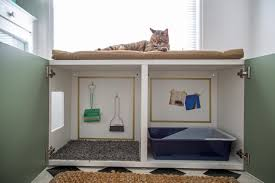 Plans To Build A Toy Box by How To Conceal A Kitty Litter Box Inside A Cabinet How Tos Diy