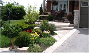 backyards compact backyard xeriscape ideas backyard ideas