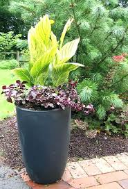 Winter Container Garden Ideas Winter Container Garden Ideas Ghanadverts Club