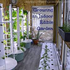 Winter Indoor Garden - 101 best aeroponic garden images on pinterest tower garden