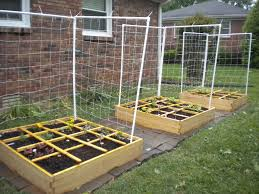 Squar Foot Square Foot Garden Never Picture Perfect