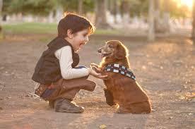 99 ideas dog pictures for kids on emergingartspdx com