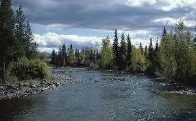 Blazing River - Page 3 Images?q=tbn:ANd9GcTryMWCUxlDSt-UzwTvk1f-A0zFl8x0-H8MYYOJC7u2rSS9JBMFEw