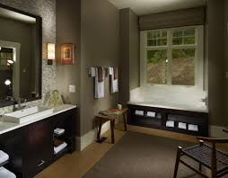cool universal design bathroom home design image fancy on
