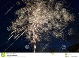 fireworks dandelion stock photo image 42864591