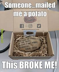Potatoe Meme - so how are you holding up because i m a potato meme by