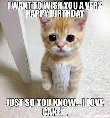 Birthday Cake Meme - i want to wish you a very happy birthday just so you know i love