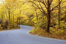 england fall foliage spots u0026 routes aaa