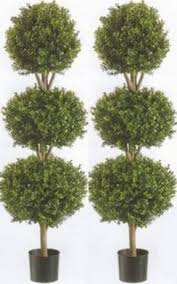 2 artificial 56 boxwood bush in outdoor topiary tree