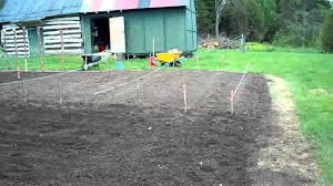 Starting An Organic Vegetable Garden by Starting To Plant The Seeds 03 Heirloom Organic Vegetable Garden