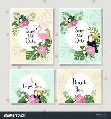 vector tropical cards set stock vector 565185967