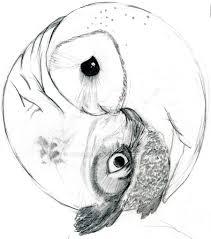 yin yang owls by didgeman3 on deviantart