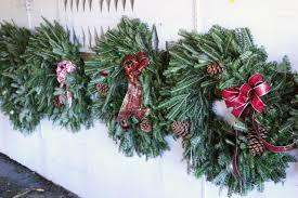 christmas western nc christmas tree farms farm near mexico mo