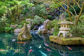 japanese garden japanese garden koi pond everywhere once