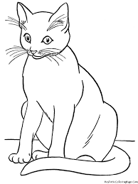 realistic cat coloring pages bestofcoloring com