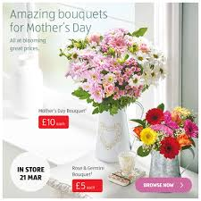 mothers day flowers aldi uk