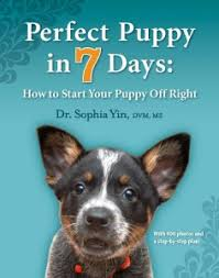 australian shepherd training books 20 best dog training books learn how to train your canine