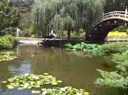 Huntington Botanical Gardens Pasadena by Japanese Gardens At The Huntington Botanical Gardens Youtube