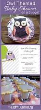 best 25 owl themed parties ideas on pinterest owl party