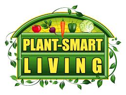 dmca policy plant smart living