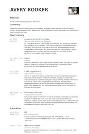 assistant account executive resume samples visualcv resume