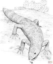 gila monster coloring page free printable coloring pages