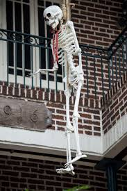 halloween decorations skeletons halloween decorations in the french quarter christopher ryan