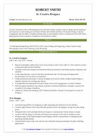 Summary Statement For Resume Designer Resume Samples Examples And Tips