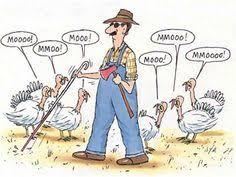 turkey jokes laughter best medicine turkey jokes