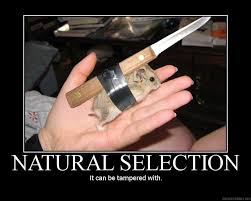 natural selection by yohan gas mask on deviantart