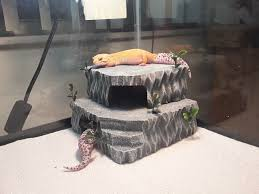 Vivarium Wood Decor Leopard Gecko Hide Herphomes Vivarium Decor Stackable Hide