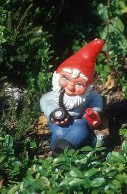 Lawn Gnome by Gratuitous Randomness Lawn Gnomes Westword