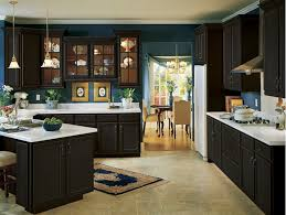 Amish Kitchen Cabinets 9 Best Amish Kitchen Cabinets Images On Pinterest Kitchen Dream