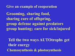 biosphere chapter 3 review ppt download