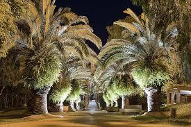 Led Landscape Tree Lights Led In Ground Well Light 8 Watt 400 Lumens Led Well Lights